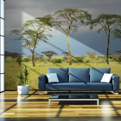 Artgeist Fototapete - Savanna trees