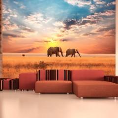 Artgeist Fototapete - Zwei Elefanten in der afrikanischen Savanne