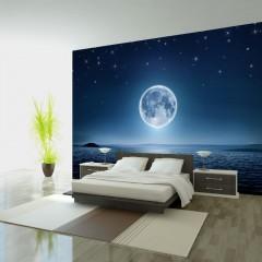 Artgeist Fototapete - Moonlit night