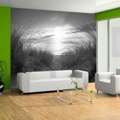 Artgeist Fototapete - Strand (schwarz-weiß)