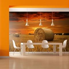 Basera® Fototapete Landschaftsmotiv 100403-260, Vliestapete