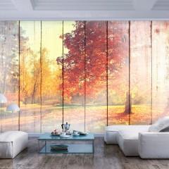 Artgeist Fototapete - Autumn Sun