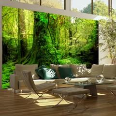 Artgeist Fototapete - Dschungel