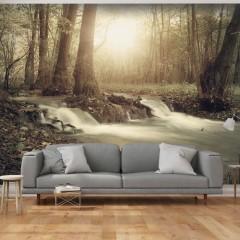 Artgeist Fototapete - Forest Cascade