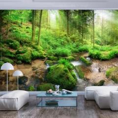 Artgeist Fototapete - Humid Forest