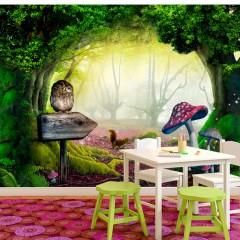 Artgeist Fototapete - Owlish corner