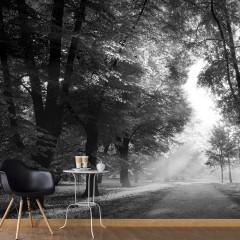Artgeist Fototapete - Path of Memories
