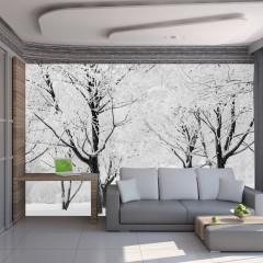 Artgeist Fototapete - Verschneite Bäume: Ein Wintermärchen