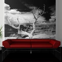 Artgeist Fototapete - Baum mit Grand Canyon im Hintergrund