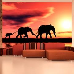 Artgeist Fototapete - Elefanten: Familie