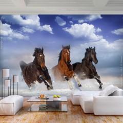 Artgeist Fototapete - Horses in the Snow