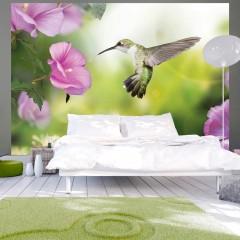 Artgeist Fototapete - Humming-bird