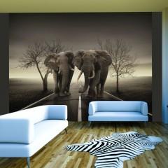 Artgeist Fototapete - Stadt der Elefanten