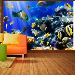 Artgeist Fototapete - Underwater adventure