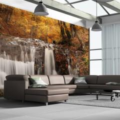 Artgeist XXL Tapete - Autumn landscape: waterfall in forest