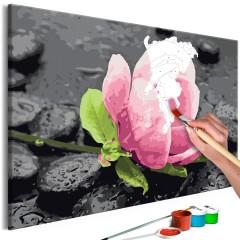 Artgeist Malen nach Zahlen - Pink Flower and Stones