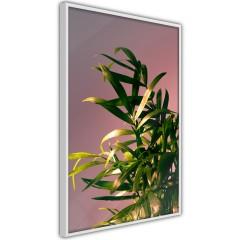 Poster - Botanical Detail [Poster]