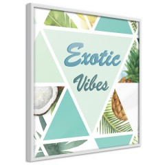 Poster - Exotic Vibes (Square) [Poster]