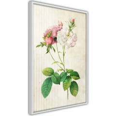 Poster - Floristic Chic [Poster]