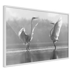 Poster - Heron Love [Poster]