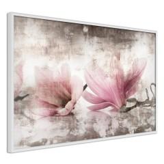 Poster - Magnolia Memory [Poster]