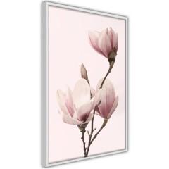 Poster - Seasonal Flowers [Poster]