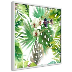 Poster - Tropical Shadow (Square) [Poster]