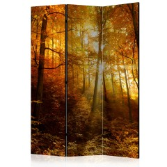 Artgeist 3-teiliges Paravent - Autumn Illumination [Room Dividers]