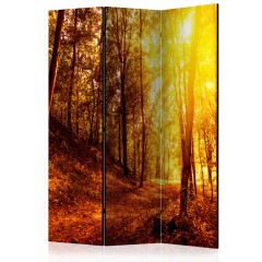Artgeist 3-teiliges Paravent - Autumn Walk [Room Dividers]