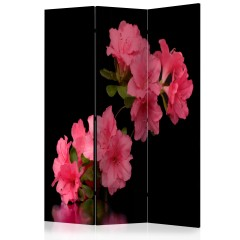 Artgeist 3-teiliges Paravent - Azalea in Black [Room Dividers]