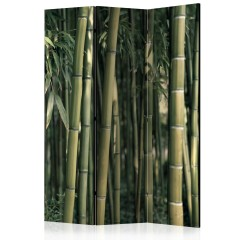 Artgeist 3-teiliges Paravent - Bamboo Exotic [Room Dividers]