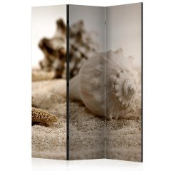 Artgeist 3-teiliges Paravent - Beach and shell [Room Dividers]
