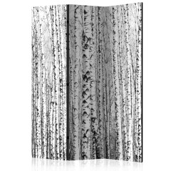 Artgeist 3-teiliges Paravent - Birch forest [Room Dividers]