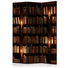 Artgeist 3-teiliges Paravent - Bookshelves [Room Dividers]