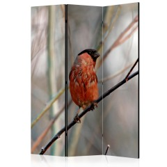 Artgeist 3-teiliges Paravent - Bullfinch in the forest [Room Dividers]