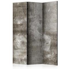 Artgeist 3-teiliges Paravent - Cold Concrete [Room Dividers]