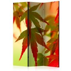 Artgeist 3-teiliges Paravent - Colourful leaves [Room Dividers]