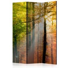 Artgeist 3-teiliges Paravent - Forest Colours [Room Dividers]