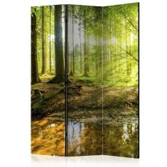Artgeist 3-teiliges Paravent - Forest Lake [Room Dividers]