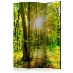 Artgeist 3-teiliges Paravent - Forest Rays [Room Dividers]