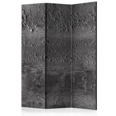 Artgeist 3-teiliges Paravent - Grey Storm [Room Dividers]
