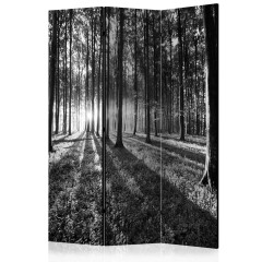 Artgeist 3-teiliges Paravent - Grey Wilderness [Room Dividers]