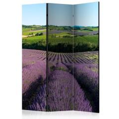 Artgeist 3-teiliges Paravent - Lavender fields [Room Dividers]