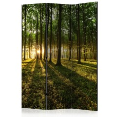 Artgeist 3-teiliges Paravent - Morning in the Forest [Room Dividers]