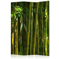 Artgeist 3-teiliges Paravent - Oriental Garden [Room Dividers]