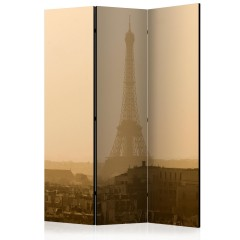 Artgeist 3-teiliges Paravent - Paris at Dawn [Room Dividers]