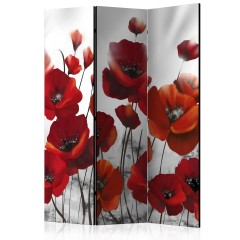 Artgeist 3-teiliges Paravent - Poppies in the Moonlight [Room Dividers]