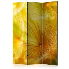 Artgeist 3-teiliges Paravent - Soft dandelion flower [Room Dividers]