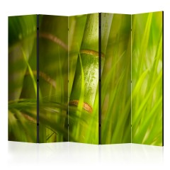 Artgeist 5-teiliges Paravent - bamboo - nature zen II [Room Dividers]