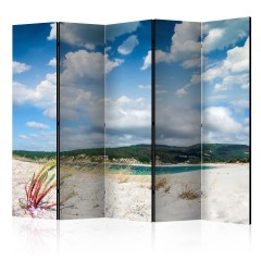 Artgeist 5-teiliges Paravent - Beach on the Costa da Morte II [Room Dividers]